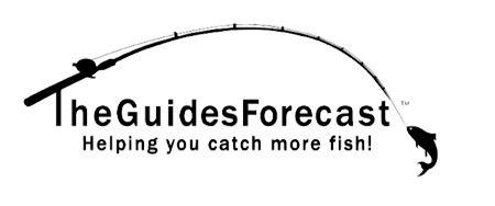 The Guide's Forecast